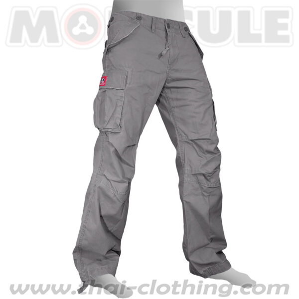 Backpacker Molecule Pants Grey