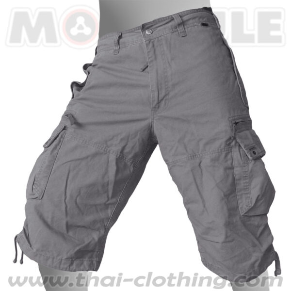 Molecule Pants Globetrotter Grey 3/4 length