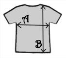 Rocky T Shirt Size Measurements